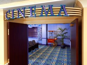 cinema-room-bristal-sayville