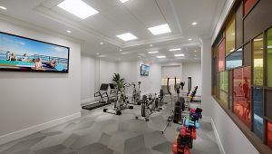The Bristal at York Avenue Fitness Center